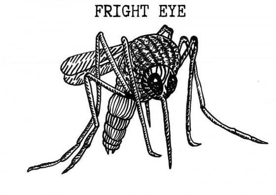 Fright Eye cover